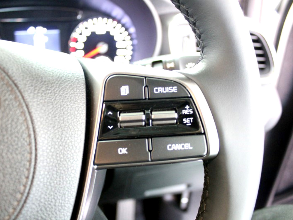2019 SORENTO 2WD 2.2D 8AT 7SEATER EX
